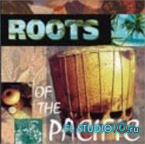 Big Fish Audio - Roots Of Pacific