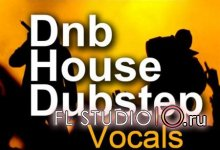 Dnb, House and Dubstep Vocals