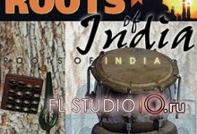 Big Fish Audio - Roots Of India