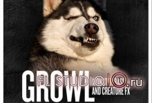 Growl - Monster Bass & Creature FX