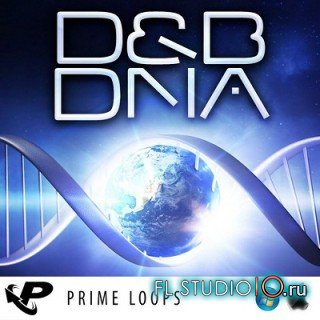 Prime Loops - D&B DNA