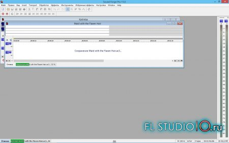 Sound Forge Pro 11.0 (05.2015)