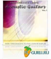 Big Fish Audio Performance Loops Acoustic Guitars(wave)
