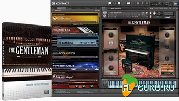 Native Instruments The Gentleman 1.2