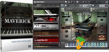 Native Instruments The Maverick 1.2