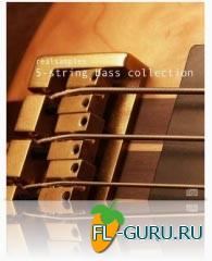 realsamples 5-String Bass Collection - библиотека сэмплов(Multiformat)