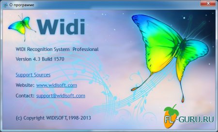 WIDISOFT - WIDI Recognition System Professional 4.3 Build 1570 x86 [2013, ENG + RUS]