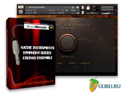 Native Instruments Symphony Series Strings Ensemble (русский мануал)
