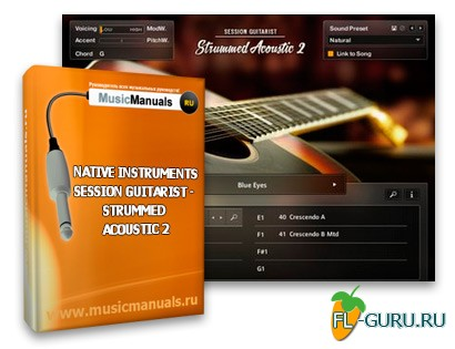 Native Instruments Session Guitarist - Strummed Acoustic 2 (русский мануал)