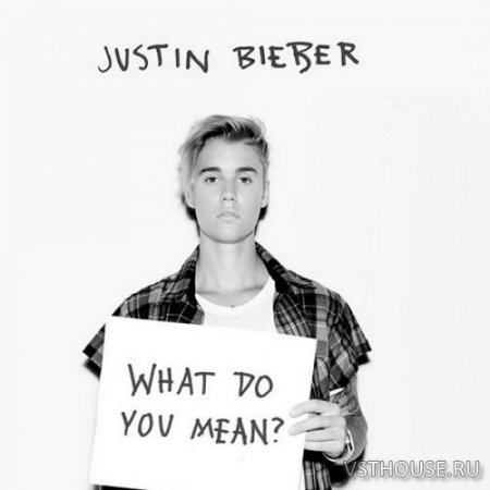 Justin Bieber – What Do You Mean (Remix Stems) - ремикс пак