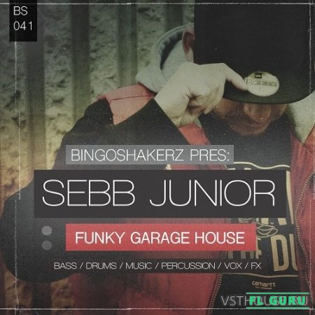 Bingoshakerz - Sebb Junior Funky Garage House (WAV) - сэмплы deep house