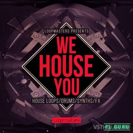 Loopmasters - We House You (HALION, KONTAKT, EXS24, KONG, NNXT, SFZ, REX2, MIDI, WAV) - сэмплы house