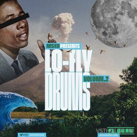 MSXII Sound Design - LO-FLY DRUMS VOL.2 (WAV) - сэмплы ударных