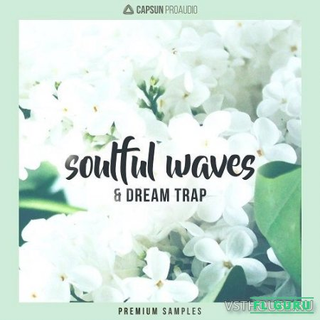 CAPSUN ProAudio - Soulful Waves & Dream Trap (WAV) - сэмплы trap