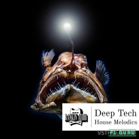 Rankin Audio - Deep Tech House Melodics (MIDI, WAV) - сэмплы tech house