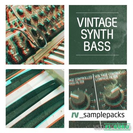 RV Samplepacks - Vintage Synth Bass (MIDI, REX2, WAV) - сэмплы баса